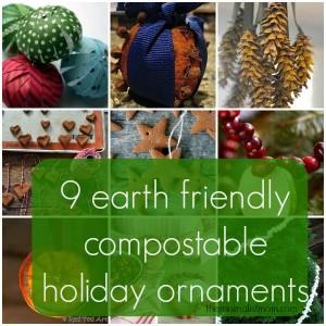 9 Compostable or Edible Christmas Tree Decorations