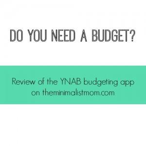 Do You Need a Budget?